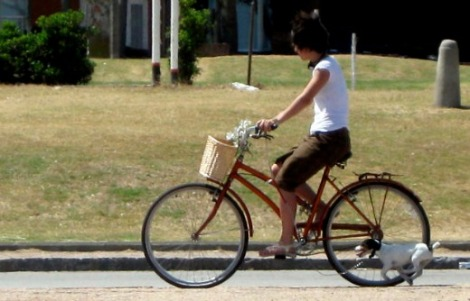 alquiler+bicicletas+barato+madrid+3+euros